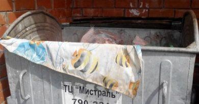 Нашли собаку в мусорном баке