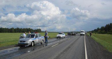 263 километр трассы Тюмень - Омск