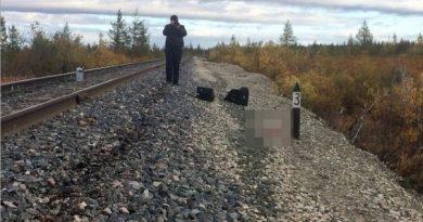выкинула ребенка из поезда на Ямале