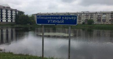 утонул пруд
