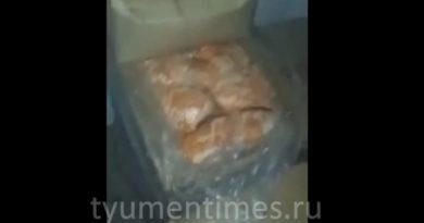 заперли в холодильнике в Сургуте