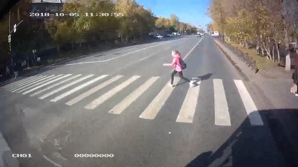 выбежала перед автобусом