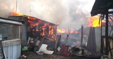 Пожар в Патрушево