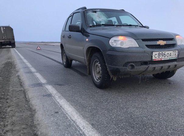 На Ямале кусок льда пробил лобовое стекло Нивы, погибла 27-летняя тюменка
