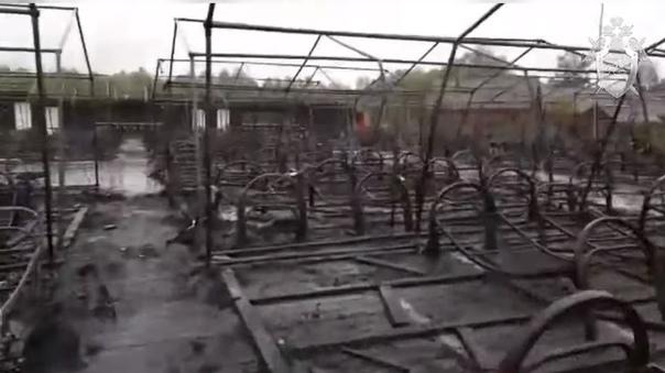 пожар Холдоми лагерь