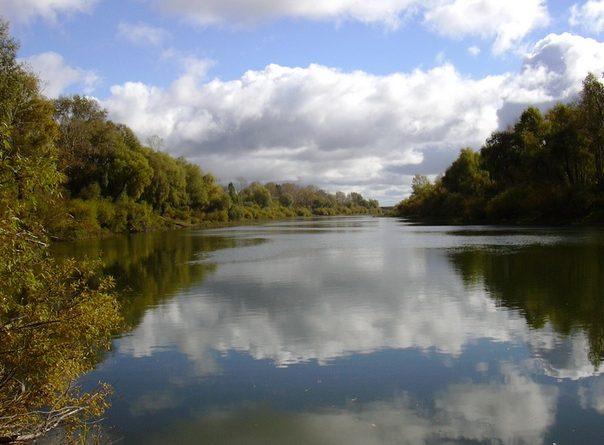 В реке Ишим утонул 13-летний мальчик: сорвался с высокого берега, играя с собакой