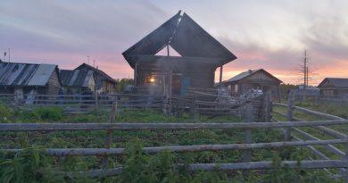 В селе под Тобольском внук избил досмерти бабушку и дедушку