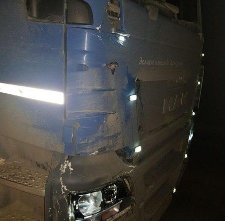 На трассе под Омутинкой фура сбила насмерть пешехода