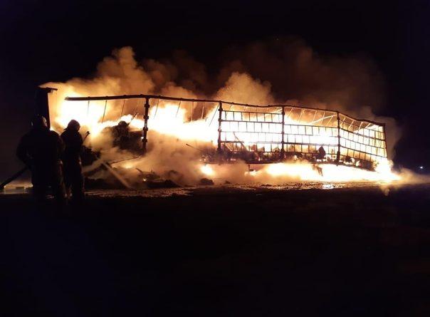 огненное дтп на трассе тюмень омск