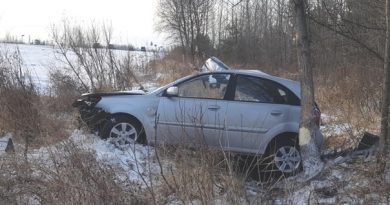 Супружеская пара погибла в аварии под Ярково