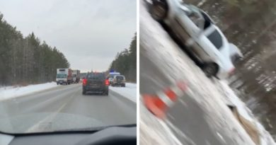Под Левашами Renault Logan залетел под встречный грузовик, погибла пассажирка легковушки
