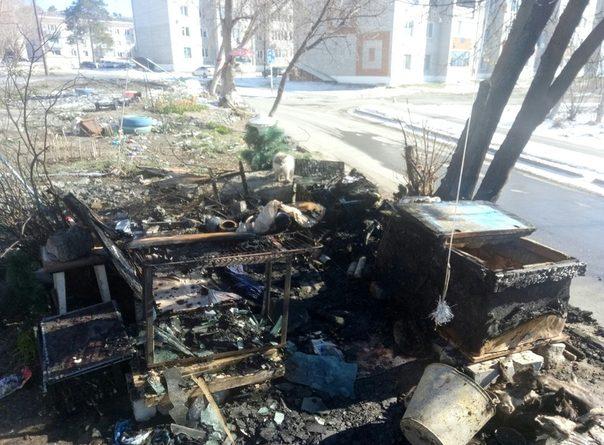 В Заводоуковске сожгли кошек