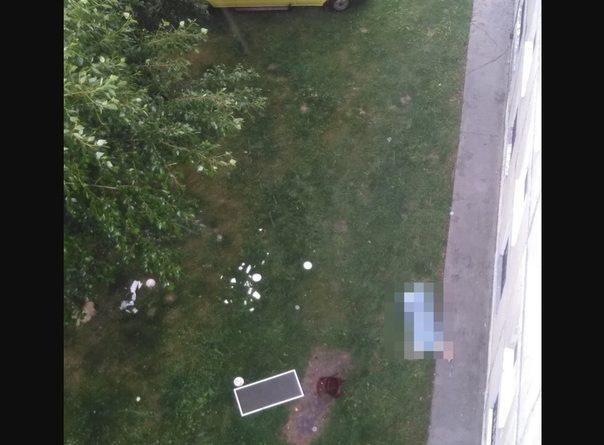 выпала из окна