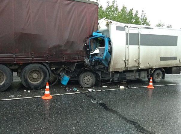 """Под Абатским японский грузовик влетел в прицеп """"американца"""": водитель погиб"""