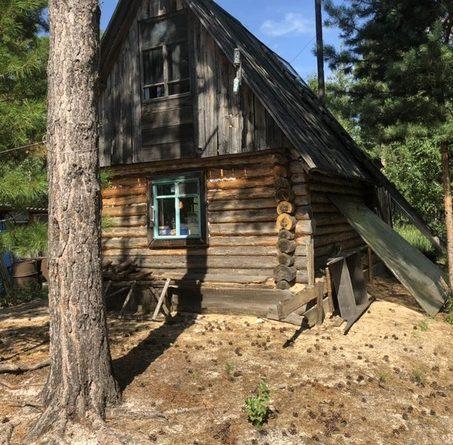 В уватском лесу нашли тело мужчины, которого загрыз медведь
