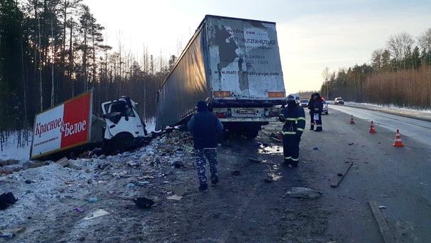 На трассе под Пыть-Яхом фура врезалась во встречный фургон, водитель погиб