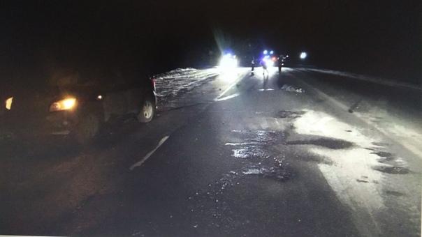 На трассе Тюмень - Омск под Новой Заимкой RAV4 сбил насмерть пешехода