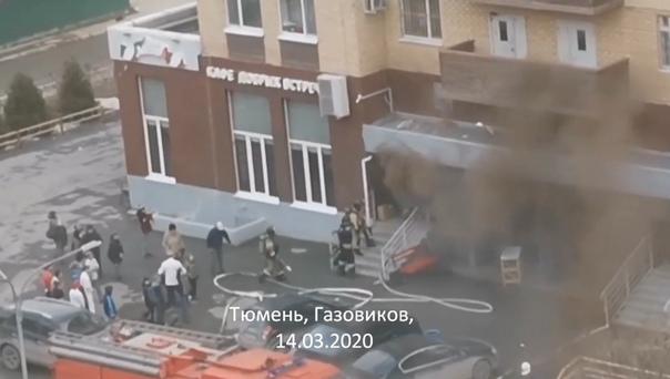 В тюменской Зареке горело кафе. ВИДЕО очевидцев
