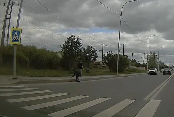 В Тюмени неравнодушный водитель помог утке с утятами перейти дорогу