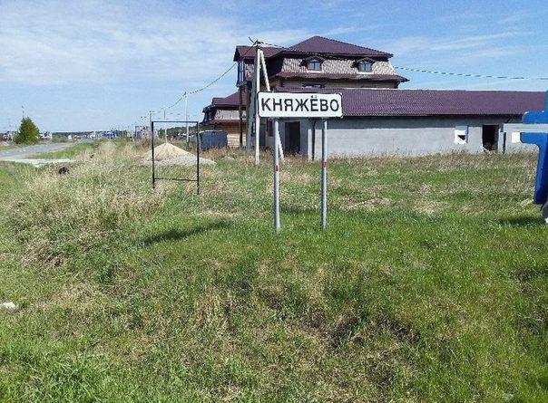 На ферме в Княжево сгорели 187 коз и свиней